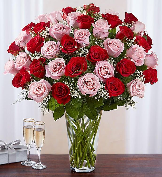 Ultimate elegance long stem pink red roses 1800flowers 100276 ultimate elegance long stem pink red roses mightylinksfo