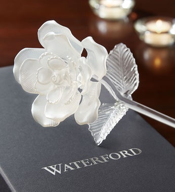 Waterford® White Pearl Rose
