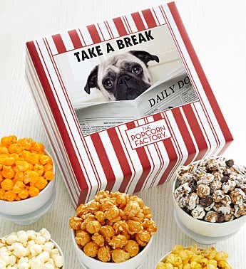 Packed With Pop™ Take A Break Dog
