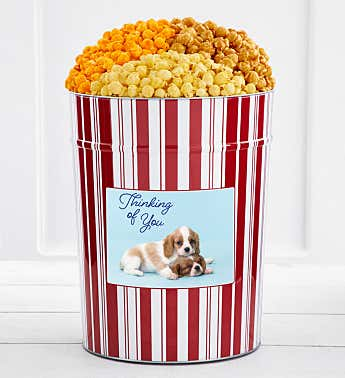 Tins With Pop® 4 Gallon Thinking Of You Dog