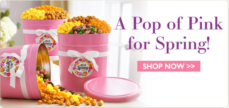 popcorn gifts gourmet popcorn gift baskets the popcorn factory